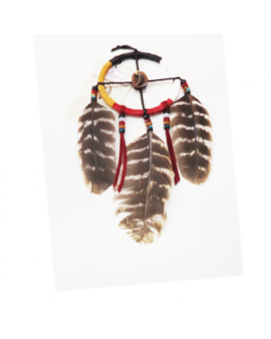 4 Directions  Medizinrad der Cherokee