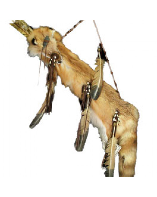 Pfeilköcher der Navajo aus  Fuchsfell