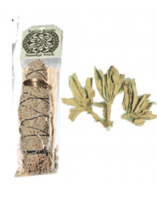 """""""White Sage"""" - weisser, wilder Salbei aus indianischem Anbau"""